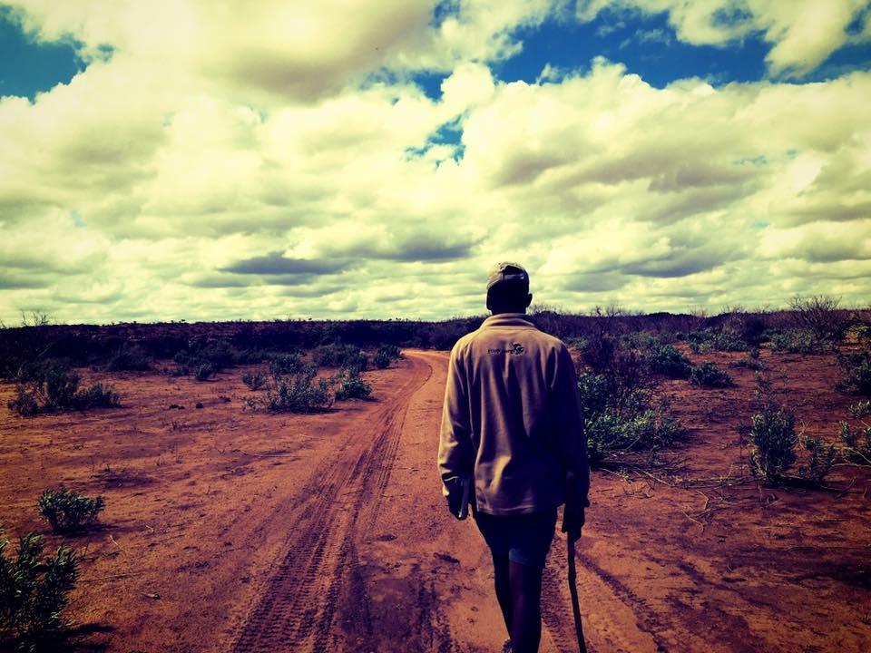 mashatu botswana ecotraining
