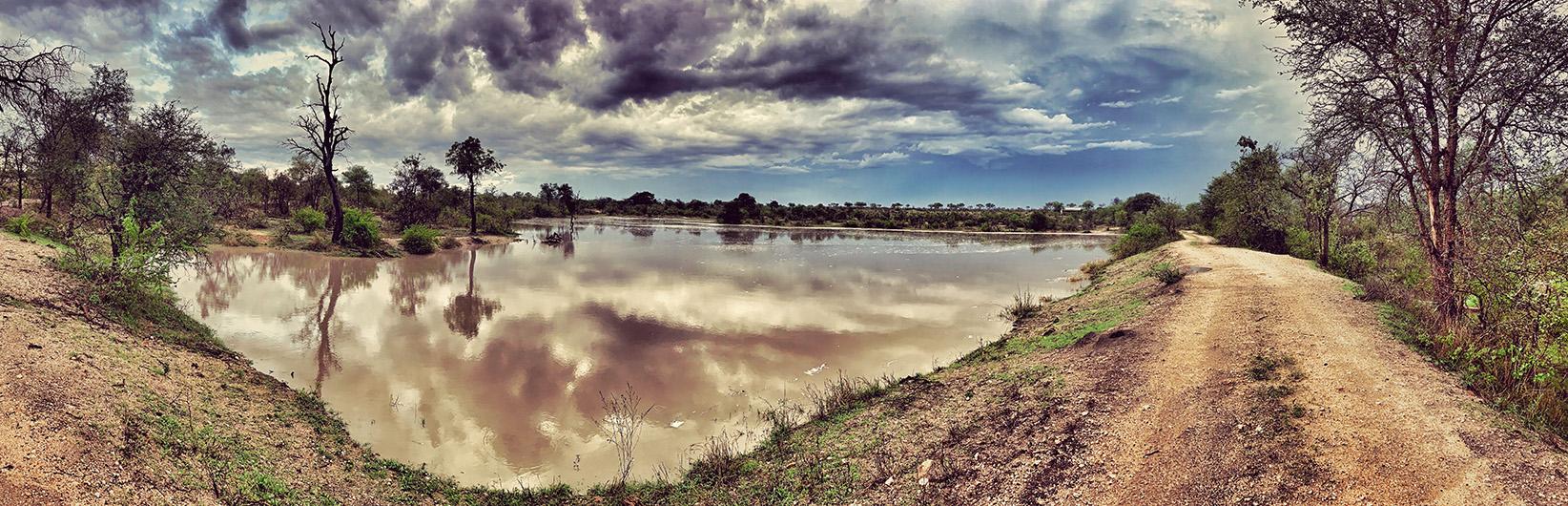 """Pourquoi j'ai quitté un """"job en or"""" en France, pour une vie de safaris en Afrique du Sud"""
