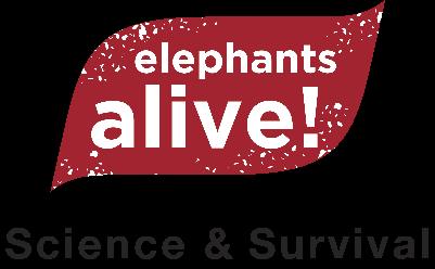 ELEPHANTS ALIVE